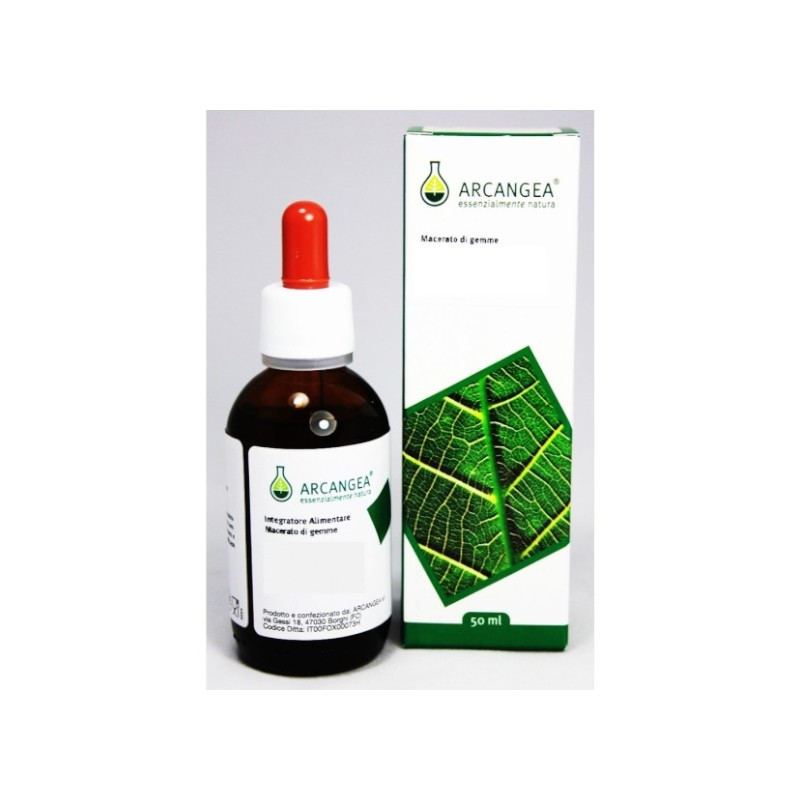 Arcangea - Ribes Nigrum Gemmoderivato (ml.50)