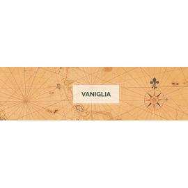 Vaniglia & Zenzero