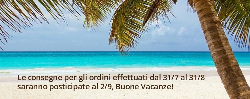 Le consegne per gli ordini effettuati dal 31/7 al 31/8 saranno posticipate al 2/9, Buone Vacanze!