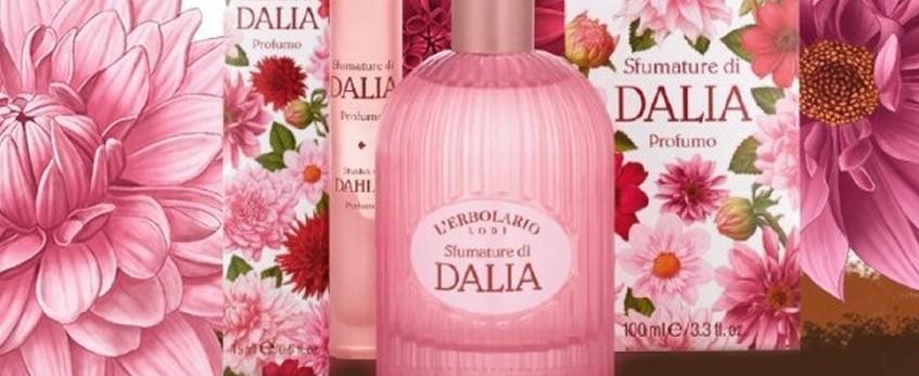 Da un fiore esotico ed elegante, un profumo femminile che incanta.  Le Dalie si sono schiuse nel nostro giardino per creare una linea dedicata alla donna raffinata e sensuale, ma anche per profumare con eleganza gli ambienti.