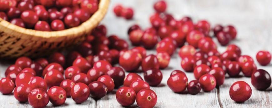 Integratore alimentare a base di estratto titolato di Cranberry, Uva ursina, Verga d'oro e The Verde