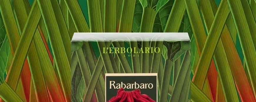 Ampie foglie di un verde brillante, gambi carnosi che virano al rosso porpora: passeggiando negli orti è facile incontrare la pianta del Rabarbaro, originaria dell'Asia, ma diffusa da tempo anche nelle regioni temperate dell'Europa.